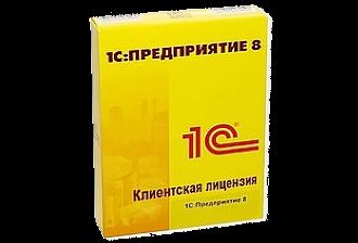 1С: Предприятие 8. Дополнительные лицензии на платформу и сервер